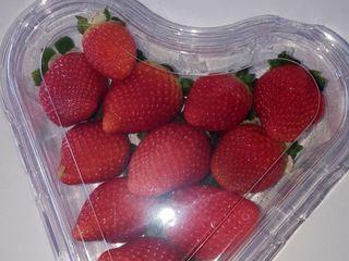 Купим ягоду ( клубнику, малину, черешню, вишню, персик, абрикос и т.д.