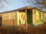 Se vinde casa in Hasnasenii Mari.