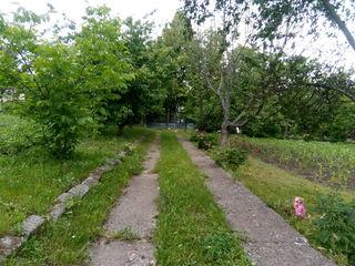 Vând casă în satul Mereușeuca, r-nul Ocnița