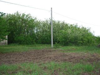 Vînd teren pentru construcție, 12 ar.,  mun. Chișinău com. Trușeni