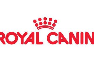 Сухие корма Royal Canin на развес с доставкой на дом!!
