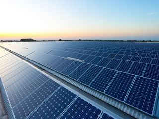 Panouri solare fotovoltaice Trina Solar 540W