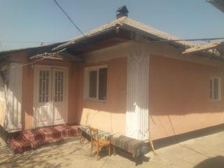 Vind casa la nistriana  are cuxne de vara garaj mare 15 m pentru un mic servis apa gaz lumina 380 si
