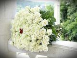 Trandafiri , 101 trandafiri 599 ; crizanteme eustome