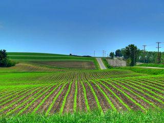 Vând teren agricol.