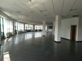 Chirie oficiu Stefan cel Mare, open space, 540 m2