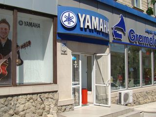 """Музыкальный магазин """"Gramofon"""". Музыкальные инструменты и звуковое оборудование"""
