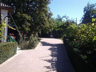 Vand casa in s. Cotiujenii Mari, raionul Soldanesti