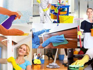 Клининговая компания золушка уборка квартир и домов мойка окон и фасадов химчистка ковров и мягкой м
