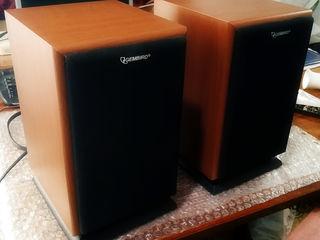 Компьютерная акустика Gembird WCS-600 -Окница-