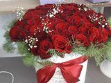 розы в ассортименте по доступным ценам от