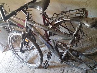 2 biciclete din Germania