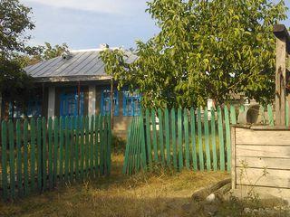 дом добротный,большой.в доме3 печки.1 для выпечки,с лежанкой,фруктовые деревья,нуждаеться в хозяине