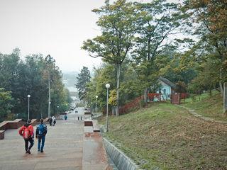 Spatiu locativ in inima Parcului Valea Morilor! Posibilitati de reconstructie, 280 m.p.!
