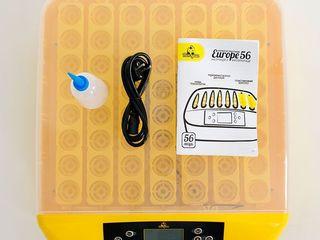 Инкубатор 56 яиц, автоматический Теплуша Europe 56/Incubator 56 ouă, automat/Livrare/Garantie