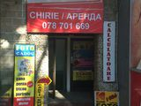 "Аренда/chirie/rent  ""7 евро"" Stefan cel Mare"