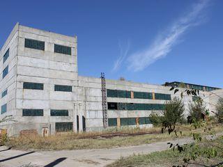 Производственные площади в Кагуле