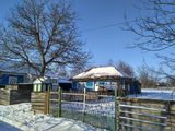 Продам дом в селе Маркауцы, Бричанский район