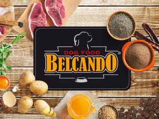 """"""" Belcando """"  для собак всех парод пр.Германия  с беспл.доставкой по Кишиневу !!!"""