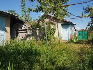 Se vinde casa batrineasca in satul Mascauti
