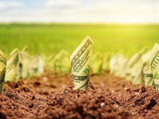 Se vinde terenuri agricole