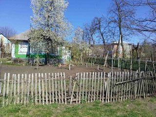 Продам дом в центре села Парканы ул. Padurilor 5. Сорокский район.