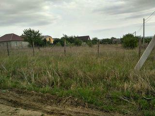 or. Leova, lot de teren pentru constructia casei. Detalii la tel