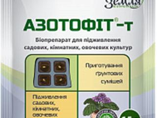 Азотофит-т stimulator natural de creștere și fixarea azotului atmosferic