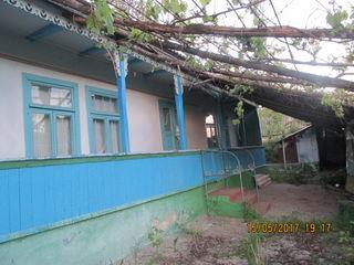 Продаю дом с земельным участком в Валя Колоница.