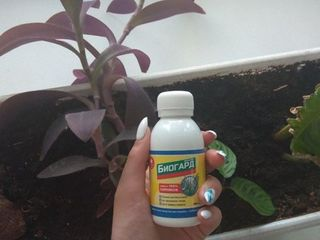 Bioguard БиоГард эффективная защита от сорняков 1