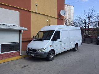 Transport/gruzoperevozchi