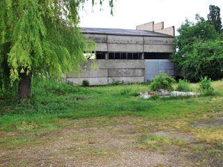 Teren pentru construcție 1,26 ha in Edinet