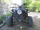 Viper ATV CF   ATA250-D
