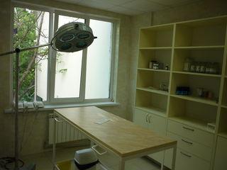 Bветеринарная клиника , на бульваре Мирча чел Бэтрын 3