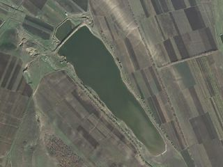 Iaz 40 ha, Nisporeni