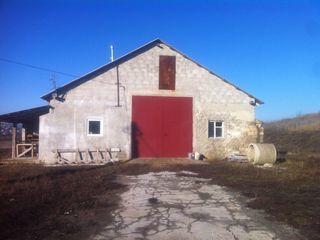 Se vinde o fermă pentru un început de afacere