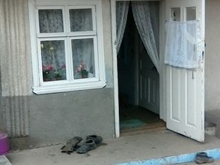 urgent! se vinde casa de locuit! lozova 7000 euro negociabil!!!