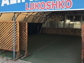 магазин лукошко