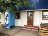 Chirie magazin + terasa