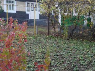 дом-сарай-хозпостройки  на 12 сотках земли +50 соток земли