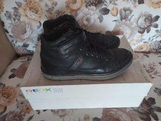 Geox: Ботинки черные кожанные. 35 размер. Длина по стельке 23 см