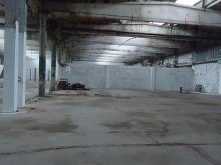 Сдаем складское помещение 250м2-300м2-550м2-800м2 на Чеканах по ул.Мештерул Маноле!