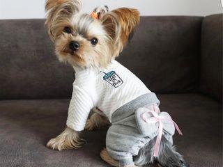 одежда  для собак .куртки,батники,комбенизоны,дождевики