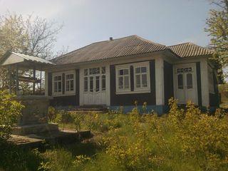 дом в нормальном состояние нужно как во всех домах немного по работать большой огород два погриба ко