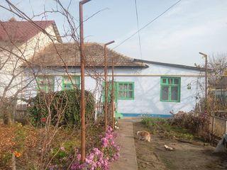 Квартира в с. Кошница