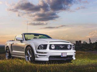 Ford Mustang Cabriolet транспорт для торжеств transport pentru ceremonie