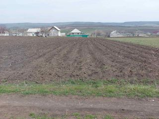 Vinzare teren pentru constructii amplasat in Orhei s.Step-Soci