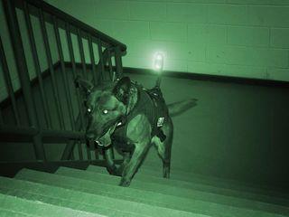 Прибор ночного виденья камуфляж военный- 2018 года - новое -до 250 метров дистанция обзора