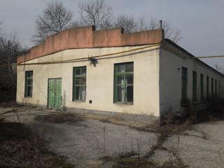 Clădire de producere r-nul Taraclia, com. Vinogradovca, sat. Vinogradovca