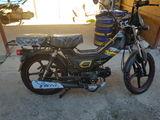 Delta moto новая модель new